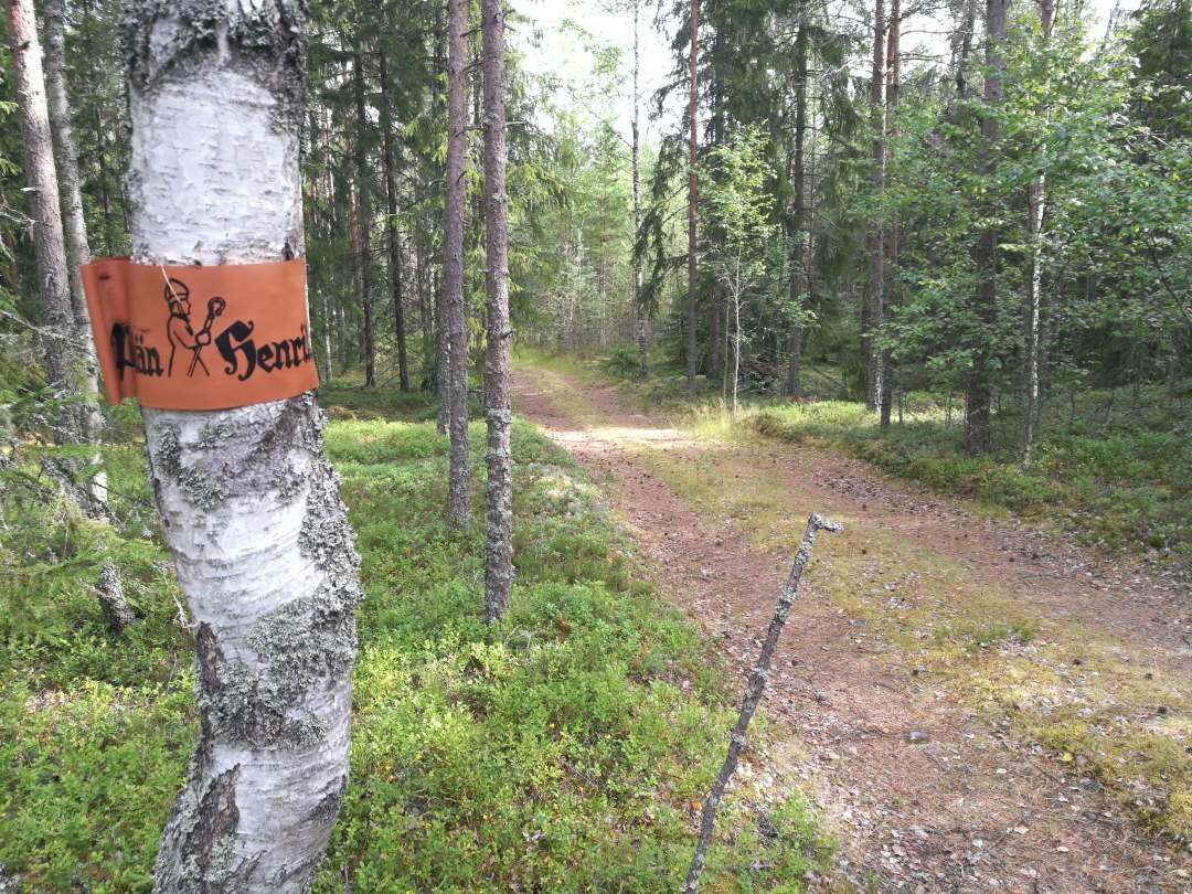 Turku-Pori maastopyörällä, Pyhän Henrikin tie