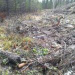 Reitti Satakunta-Pirkanmaa, Sahakoski-Ämtöö