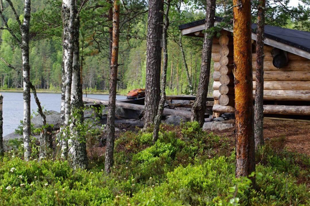 Isojärven kansallispuisto, Kuhmoinen 2011