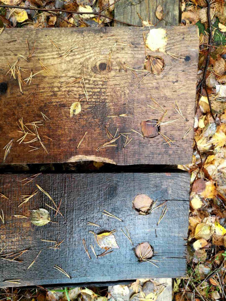 Kintulammen retkeilyalue, pitkospuu